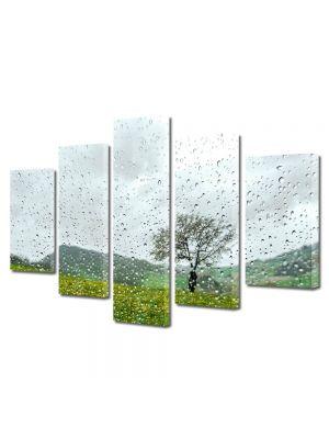 Set Tablouri Multicanvas 5 Piese Flori Dupa ploaie