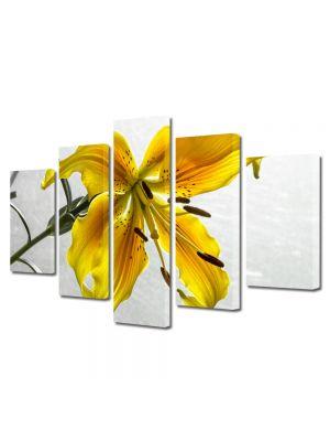 Set Tablouri Multicanvas 5 Piese Flori Liliac galbui