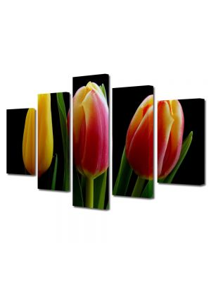 Set Tablouri Multicanvas 5 Piese Flori Trei lalele