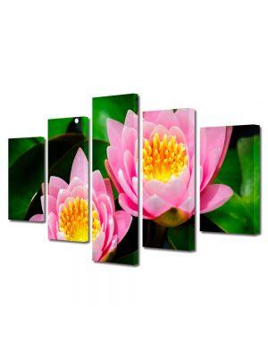 Set Tablouri Multicanvas 5 Piese Flori Lilieci de apa