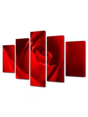 Set Tablouri Multicanvas 5 Piese Flori Trandafir rosu superb