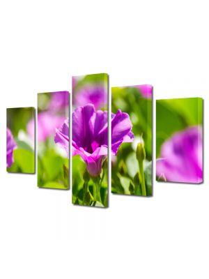 Set Tablouri Multicanvas 5 Piese Flori Violet strident