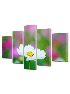 Set Tablouri Multicanvas 5 Piese Flori Alb imaculat