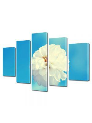 Set Tablouri Multicanvas 5 Piese Flori Floricica alba