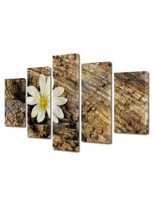 Set Tablouri Multicanvas 5 Piese Flori Vointa si putere