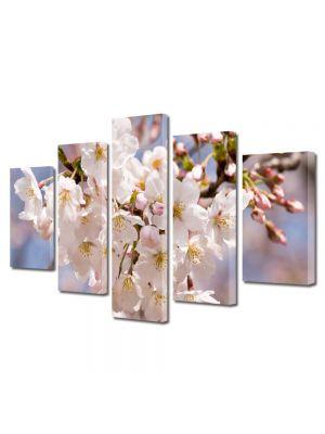 Set Tablouri Multicanvas 5 Piese Flori Flori albe japoneze