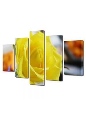 Set Tablouri Multicanvas 5 Piese Flori Trandafir galben singuratic