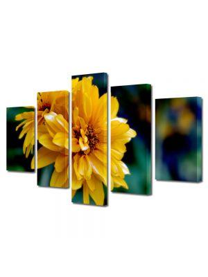 Set Tablouri Multicanvas 5 Piese Flori Dupa amiaza de vara