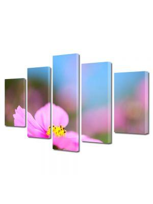 Set Tablouri Multicanvas 5 Piese Flori Floare cu nuante violet