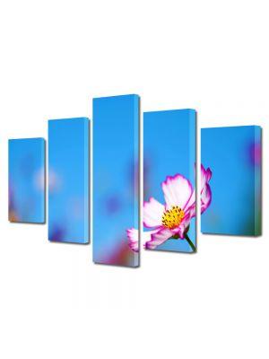 Set Tablouri Multicanvas 5 Piese Flori Floricica singuratica