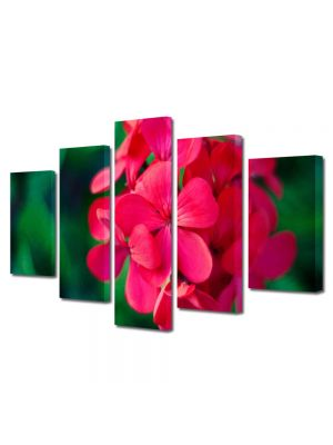 Set Tablouri Multicanvas 5 Piese Flori Floricica speciala