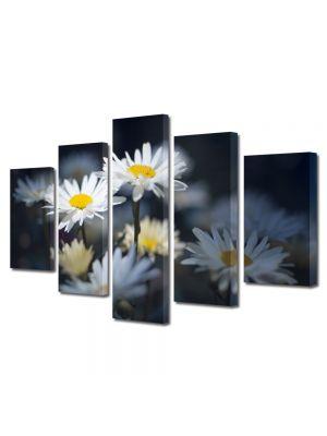 Set Tablouri Multicanvas 5 Piese Flori Margarete in umbra