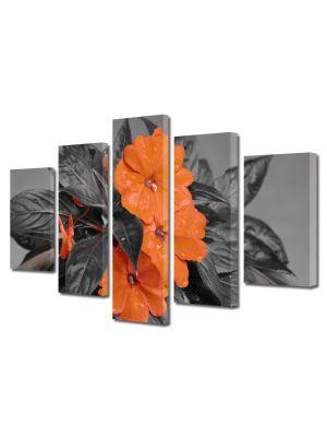 Set Tablouri Multicanvas 5 Piese Flori Flori cu nuante portocalii