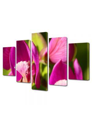 Set Tablouri Multicanvas 5 Piese Flori Flori in lumina soarelui