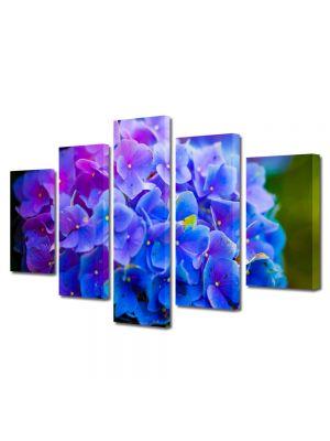 Set Tablouri Multicanvas 5 Piese Flori Floricele albastre