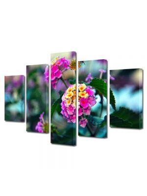Set Tablouri Multicanvas 5 Piese Flori Flori in gradina