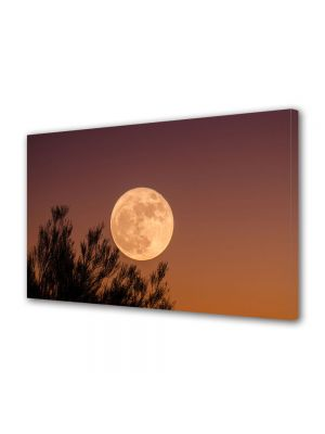 Tablou Canvas Halloween Luna plina dupa apus