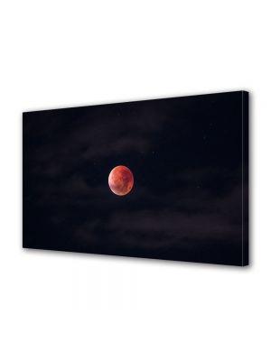 Tablou Canvas Halloween Halloween luna rosie