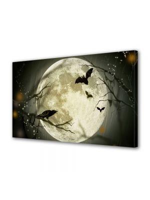 Tablou Canvas Halloween Animale nocturne