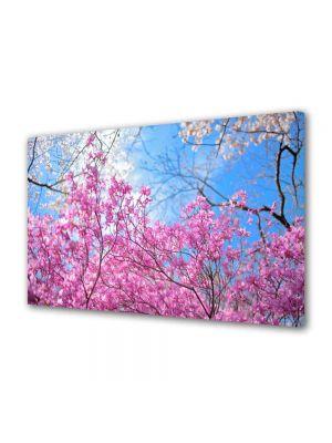 Tablou Canvas Luminos in intuneric VarioView LED Peisaj De la roz la albastru