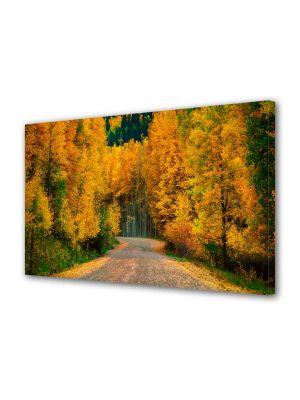 Tablou Canvas Peisaj Toamna pe drum