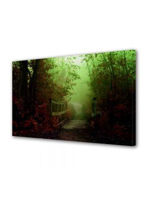 Tablou Canvas Peisaj Pod de lemn