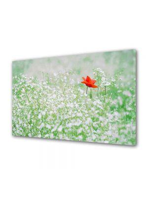 Tablou Canvas Peisaj Floare rosie