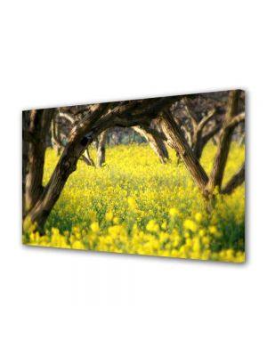 Tablou Canvas Peisaj Floricele sub copaci