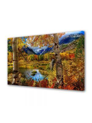 Tablou Canvas Peisaj Toamna la munte