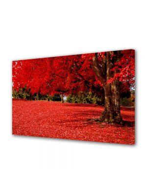 Tablou Canvas Peisaj Covor rosu sub copac