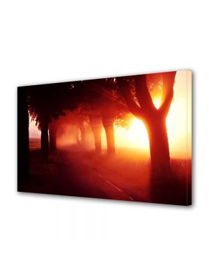 Tablou VarioView MoonLight Fosforescent Luminos in intuneric Peisaje Lumina fantastica