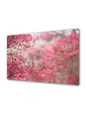 Tablou Canvas Peisaj Pomi fructiferi
