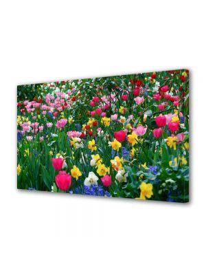 Tablou Canvas Peisaj Flori inghesuite