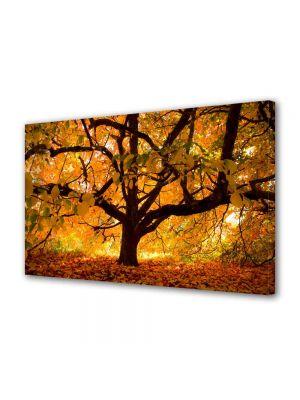 Tablou Canvas Peisaj Copac vesnic