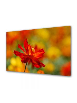 Tablou Canvas Luminos in intuneric VarioView LED Peisaj Floare singuratica