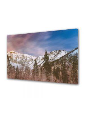 Tablou Canvas Peisaj Brazi de munte