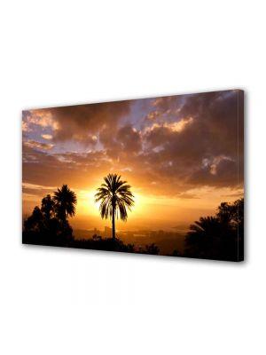 Tablou VarioView MoonLight Fosforescent Luminos in intuneric Peisaje Palmier si soare