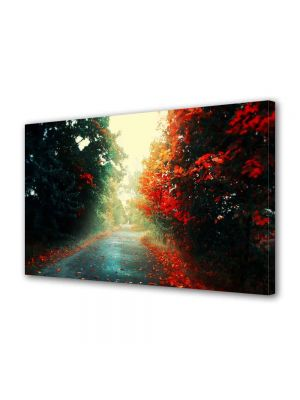 Tablou Canvas Peisaj Printre copaci