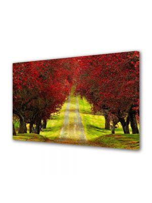 Tablou Canvas Peisaj Drum la vale