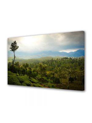 Tablou Canvas Peisaj Vietnam