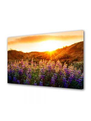 Tablou Canvas Peisaj Flori violet la munte