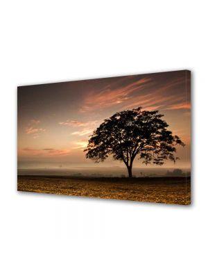 Tablou Canvas Peisaj Coroana de copac