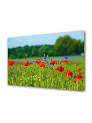 Tablou Canvas Peisaj Floricele pe campie