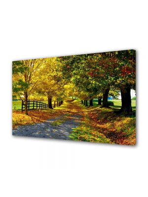 Tablou Canvas Peisaj Culori de toamna