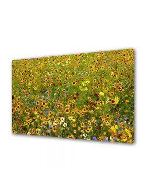 Tablou Canvas Peisaj Stropi de culoare
