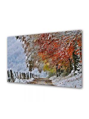 Tablou Canvas Peisaj A venit iarna