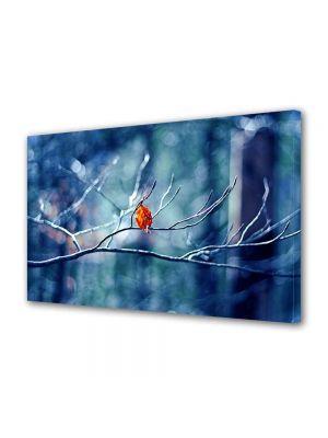 Tablou Canvas Peisaj Vine iarna!