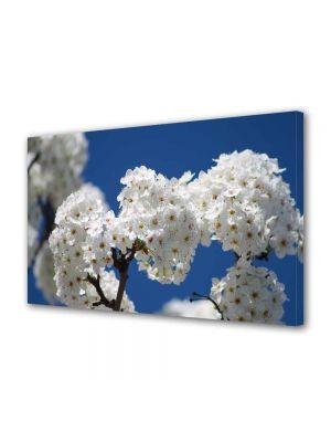 Tablou Canvas Luminos in intuneric VarioView LED Peisaj Buchete de flori albe
