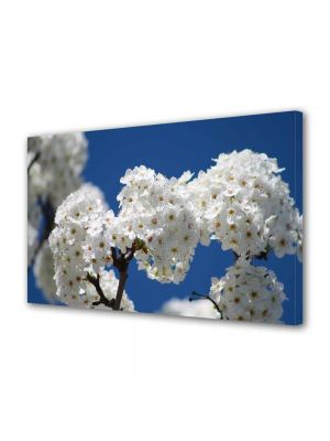 Tablou Canvas Peisaj Buchete de flori albe
