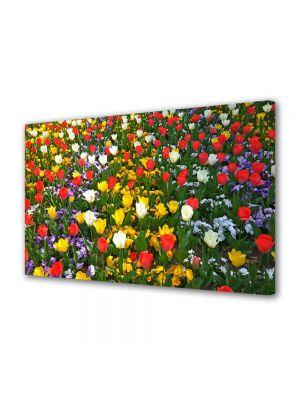 Tablou Canvas Peisaj O multitudine de culori